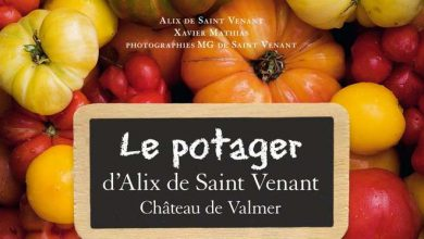 Photo of Le potager d'Alix de Saint-Venant