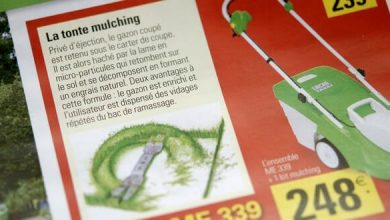 Photo of Une tondeuse mulching ou avec bac de ramassage ?
