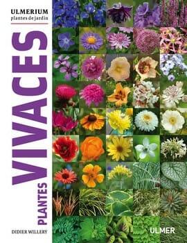 Plantes Vivaces Ulmerium Didier Willery