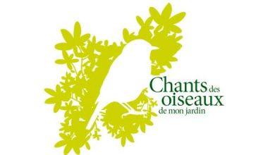 Photo of Chants des oiseaux de mon jardin