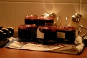confiture de myrtilles