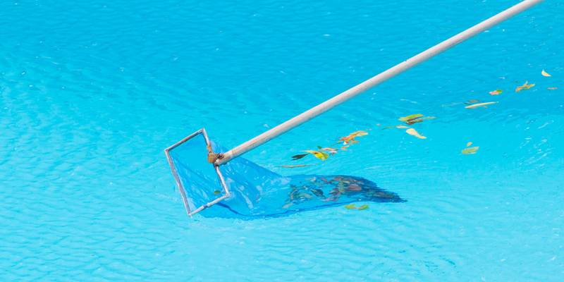 Ramasse feuilles pour piscine