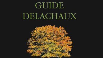 Photo of Guide Delachaux des arbres de France