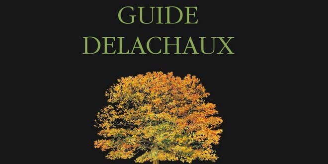 Photo of Guide Delachaux des arbres de France