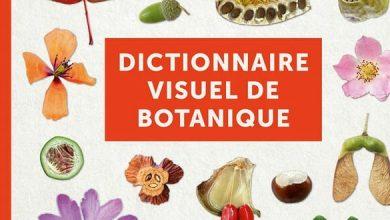 Photo de Dictionnaire visuel de botanique