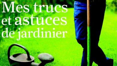 Photo of Trucs et astuces du jardinier