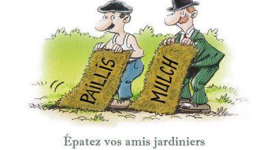 Photo de Petit livre du paillage et de la permaculture