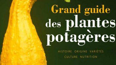 Photo de Le grand guide des plantes potagères