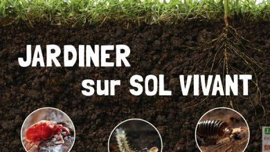 Photo of Jardiner sur sol vivant