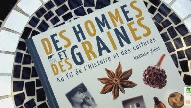 Photo of Des Hommes et des graines