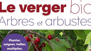 Photo of [Livre] Le verger bio, arbres et arbustes