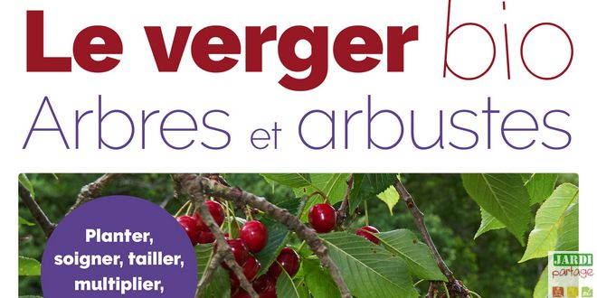 Photo of [Livre] Le verger bio, arbres et arbustes
