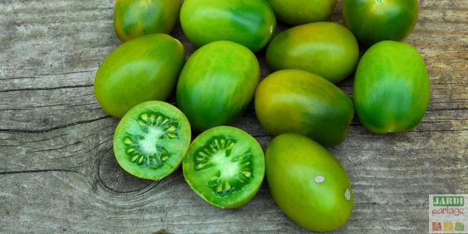 tomate green sausage