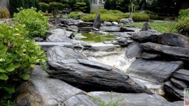 Photo of 8 principes à respecter pour créer un jardin japonais