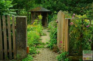 abri de jardin au potager