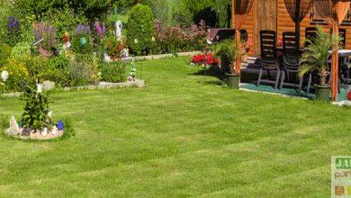 Photo of Aménager son jardin et son abri de jardin