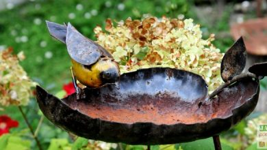 Photo of 7 idées de déco du jardin avec des objets récupérés