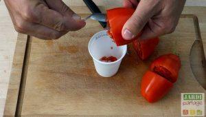 comment extraire des graines de tomates