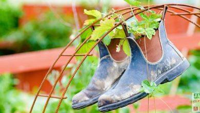 Photo of Décorer son jardin en recyclant, c'est amusant !