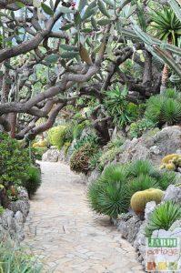 jardin botanique monaco