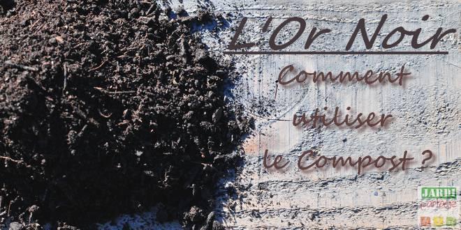 Photo of Comment utiliser le véritable Or Noir (le compost) ?