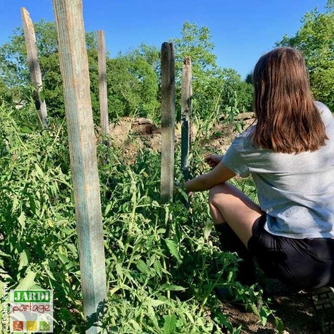 les bienfaits du jardinage sur la sante