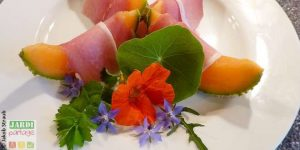 fleurs qui se mangent