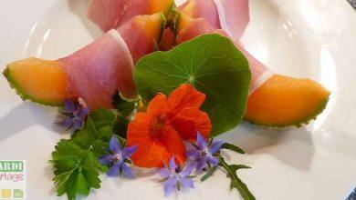 Photo of Les fleurs comestibles du jardin ont la côte !