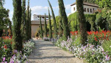 Photo of Comment aménager une allée de jardin élégante ?