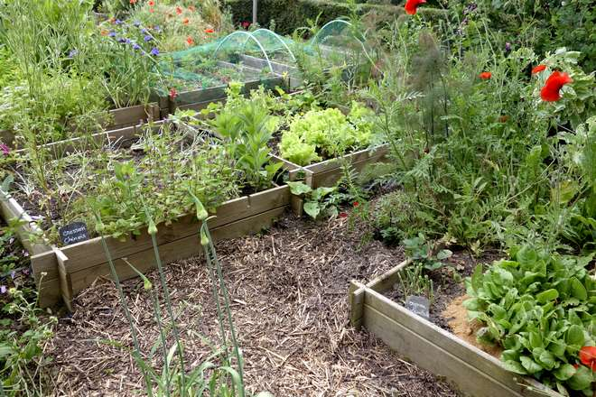 comment rendre une terre moins argileuse