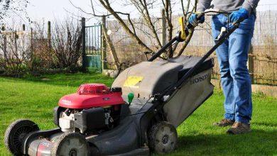 Photo of Comment tondre une pelouse trop haute ?