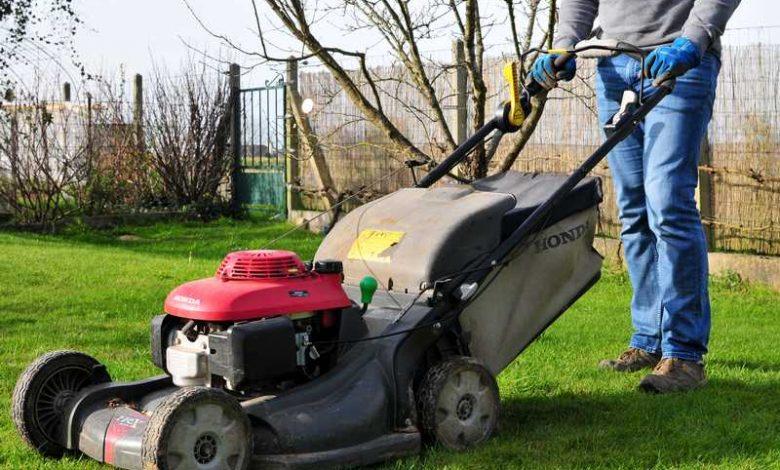 comment tondre une pelouse trop haute