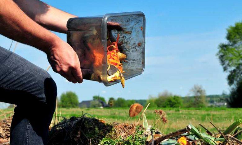 Photo of Que mettre dans le tas de compost ?