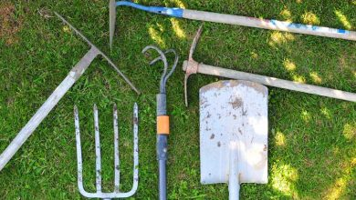 Photo of 10 outils indispensables au potager