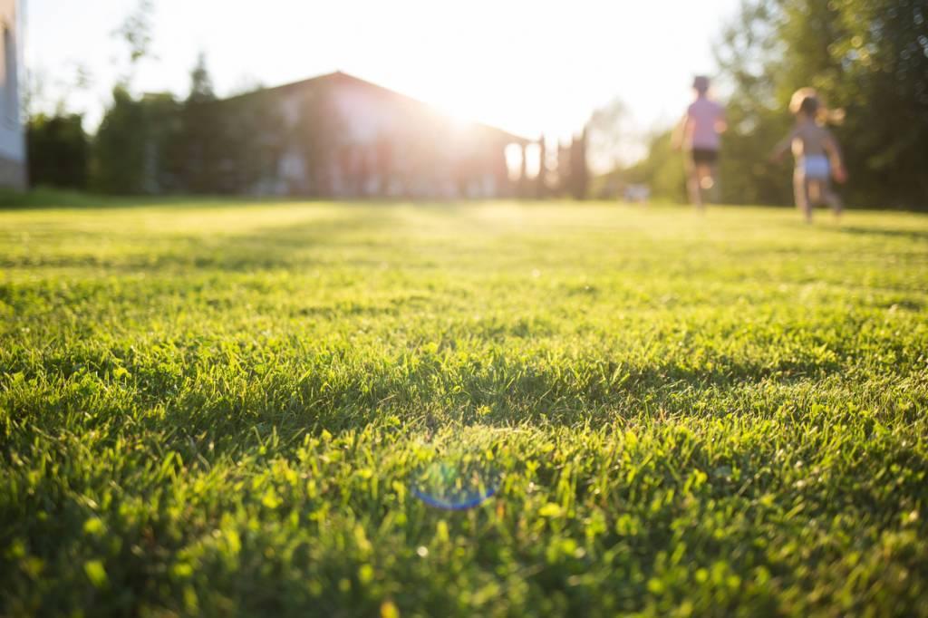 ne plus tondre sa pelouse