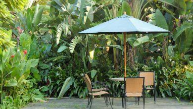Photo de Top des solutions pour se protéger du soleil dans son jardin