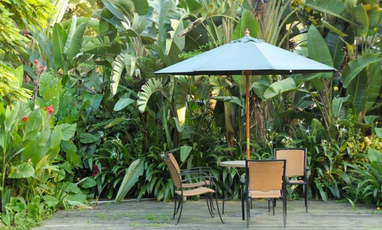se proteger du soleil au jardin