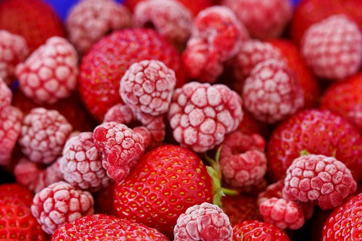 congeler des fruits