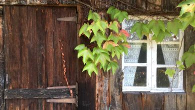 Photo de Comment bien choisir son abri de jardin ?