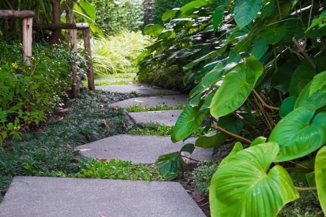 creer une allée de jardin
