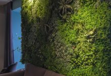 comment créer un mur végétal intérieur