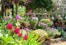 créer un jardin paysager