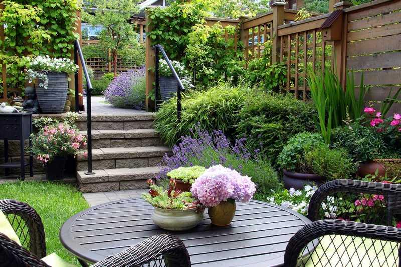 petit jardin paysager