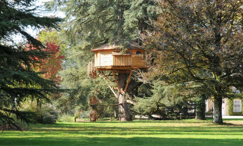 construire une cabane dans un arbre