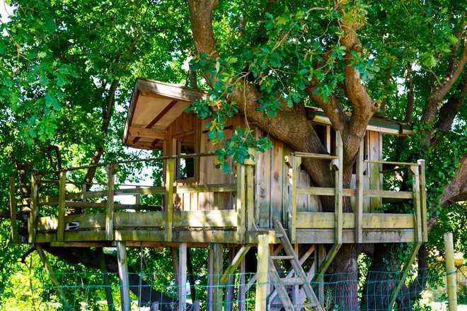 faire une cabane dans les arbres