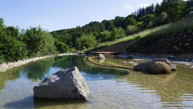 piscine naturelle fonctionnement