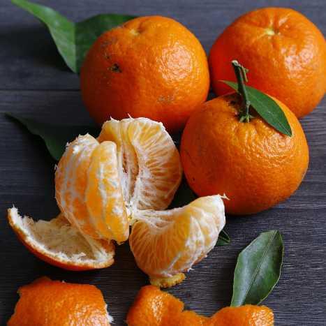 différence clementine et mandarine