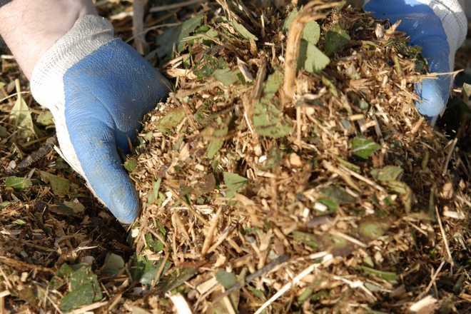 peut on stocker des déchets verts dans son jardin