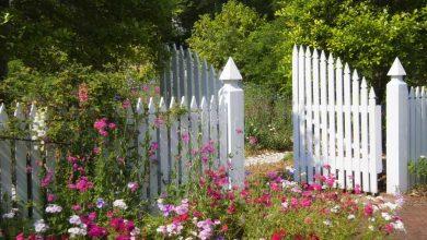 clôture en bois blanche