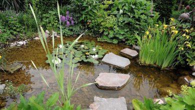 faire un ruisseau artificiel au jardin